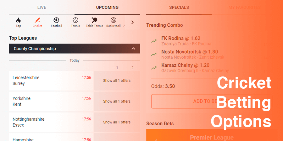 Cricket Betting Options